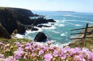 coastal scene - pembrokeshire